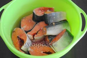 Предварительно очистить 1 кг рыбы от чешуи, отрезать  плавники. Выложить рыбу на разделочную доску, отделить   ножом голову и разрезать тушку на порционные куски толщиной 1,5–2,5 см. Хорошо промыть и обсушить бумажным полотенцем.