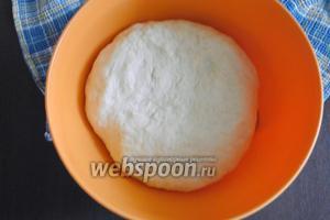 Месить тесто следует довольно долго и интенсивно, минут 10-15. В итоге тесто должно получиться однородным, мягким, довольно упругим, немного липким.  Миску, в которой тесто будет расстаиваться, смазать слегка растительным маслом, выложить тесто, накрыть миску с тестом полиэтиленовой плёнкой и поставить в тёплое место для подъёма, примерно на 1-1,5 часа.