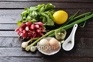 Для работы нам понадобится молодой редис с ботвой, зелёный лук с небольшими молодыми луковицами, яйца, подсолнечное масло, лимонный сок, соль, чёрный молотый перец.