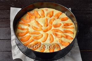 Форму, диаметром 24 сантиметра, выложить пергаментом. Вылить тесто в форму, разровнять. Сверху выложить вторую половину абрикос.