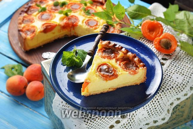 Фото Пирог с творогом и абрикосами