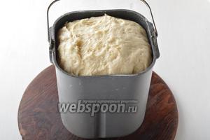 Накрыть тесто полотенцем и оставить в тёплом месте на 1 час. У меня тесто подходило в чаше хлебопечки, где специально поддерживается нужная температура.