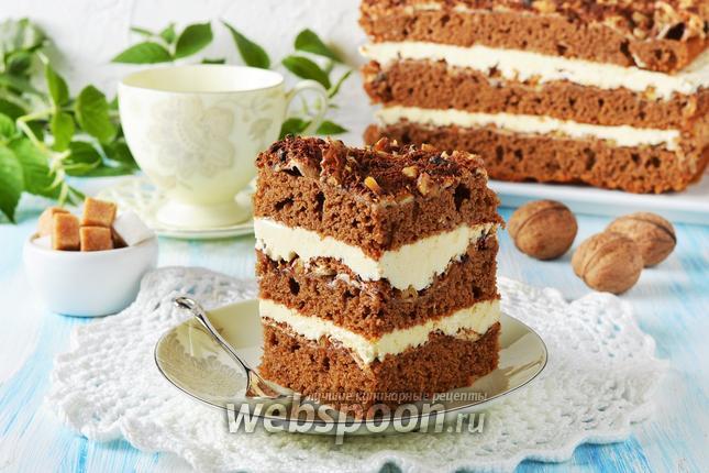 Фото Шоколадно-ореховый торт