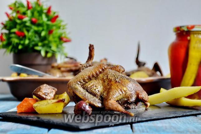 Фото Дикие голуби с картофелем и грибами