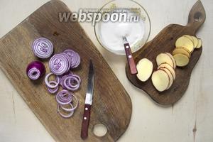 Тонко нарезать картофеля 8 штук и 2 луковицы. К 200 г сметаны добавить соуса 1 ст. л., хрена 0,5 ч. л., 1 щепотку соли и 1 щепотку чёрного молотого перца.