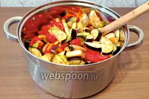 Все ингредиенты смешиваем и ставим на небольшой огонь, провариваем 30-40 минут, до готовности овощей.