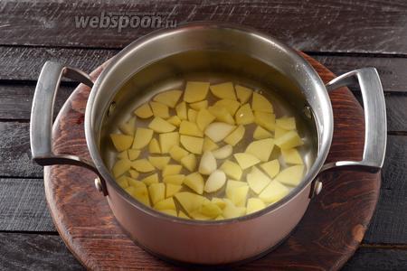 100 грамм картофеля очистить, нарезать небольшими кусочками и поместить в кипящую воду (2 литра) вместе с 1 столовой ложкой соли и 3 очищенными зубчиками чеснока. Довести до кипения и готовить 7 минут.