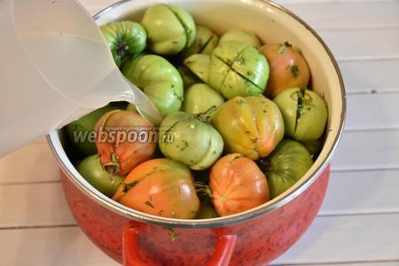 Уложить помидоры в ёмкость и залить подготовленным соляным раствором. Для солевого раствора развести в  воде (1250 мл) 75 грамм соли.