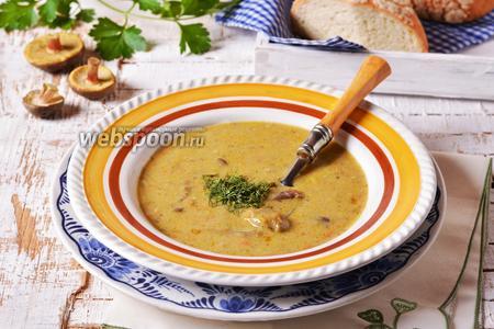 Суп из моховиков