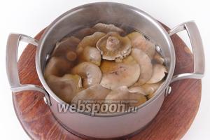 Выложить грибы в кастрюлю с кипящей водой (1 литр) и отваривать 20 минут. Откинуть на дуршлаг и охладить.