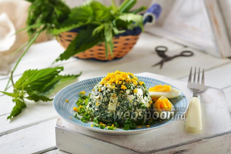 Фото Салат из крапивы и яиц