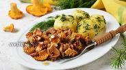 Фото рецепта Жареные лисички со сметаной