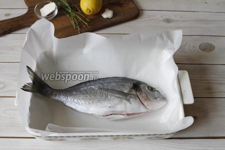 У меня была крупная дорадо, вес её составил 450 грамм. Рыбу почистить, хорошо промыть и обсушить бумажным полотенцем. Я запекала в форме. Форму застелить фольгой и выложить рыбу.