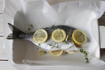Половинку 1 лимона порезать на кружочки и разложить их на рыбу, а из второй половинки сделать сок и сбрызнуть им рыбу. Растопить 35 грамм сливочного масла и полить рыбу.