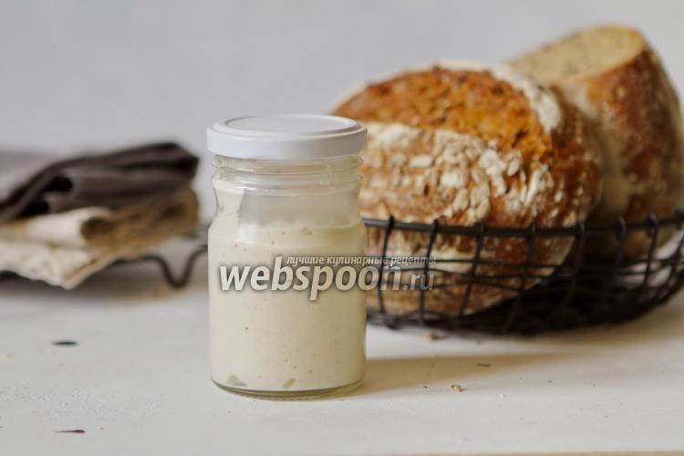 Фото Пшеничная закваска для хлеба и сдобы