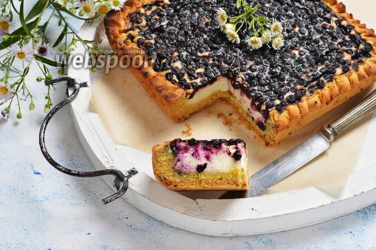 Фото Черничный творожный пирог