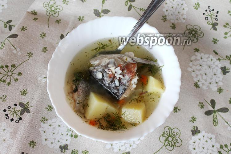 Фото Уха из форели с рисом и картофелем