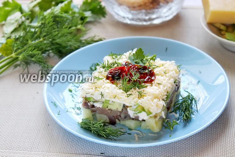Фото Шуба со скумбрией и авокадо