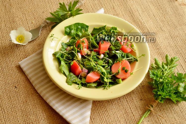 Фото Салат с маринованной редиской и микрозеленью