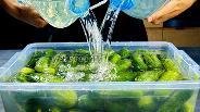 Фото рецепта Бочковые огурцы на зиму в пластиковой таре. Видео
