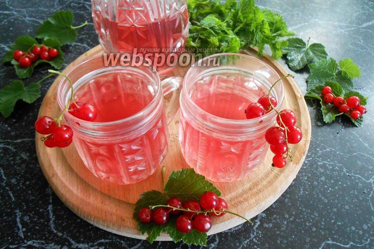Фото Компот из красной смородины и мяты